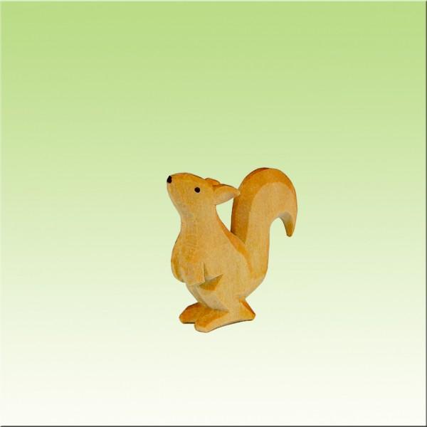 Eichhörnchen schnuppend, farbig